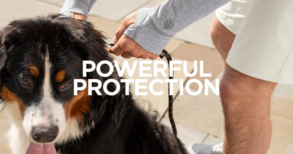 LumaLeo - Powerful Protection